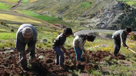 El sector agrario ha perdido peso en la economía.